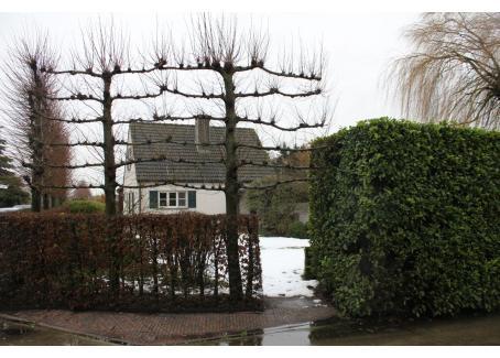 agro vastgoed legkippenbedrijf met villa te koop op 2 ha 78. Black Bedroom Furniture Sets. Home Design Ideas